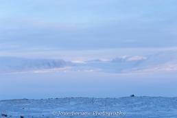 Glaciers (2011) Photo by Josie B