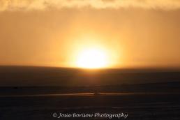 Arctic Sunsets (2011) Photo by Josie B