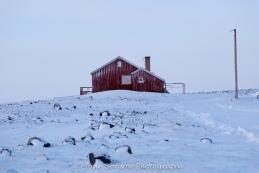 Dundas Village Arctic Landscape Photo by Josie B