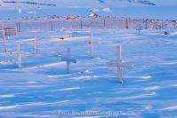 Arctic Graveyard Photo by Josie B