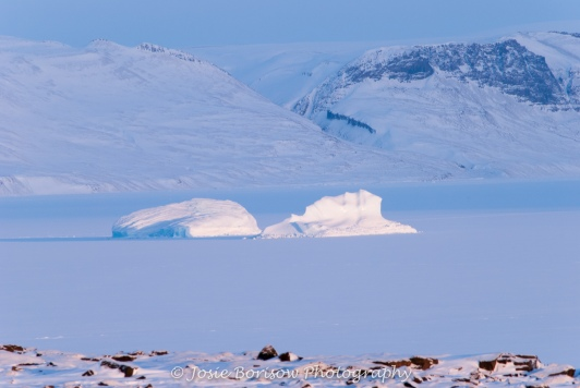 Frozen Bay and Icebergs Photo by Josie B