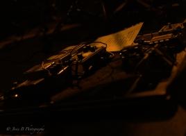 Plague Vendor (The Catalyst - 4 Mar 17)-2