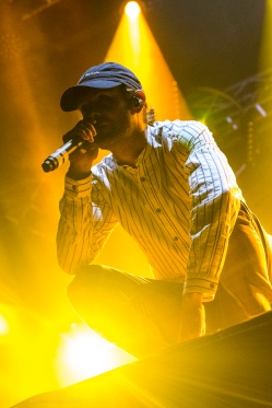 Dirty Heads (California Roots, 28 May 17)-11